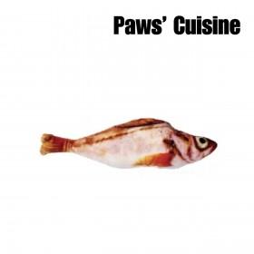 貓草玩具 - 仿真紅岩魚